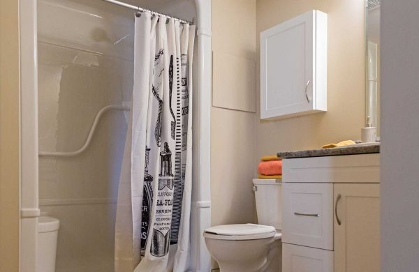 Wellings of Corunna Accessible Shower